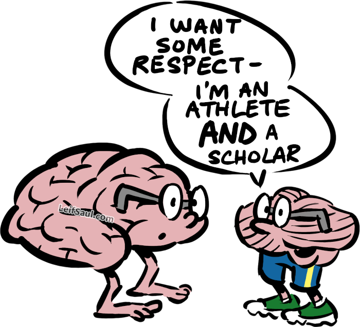 Cerebellum, athlete and scolar