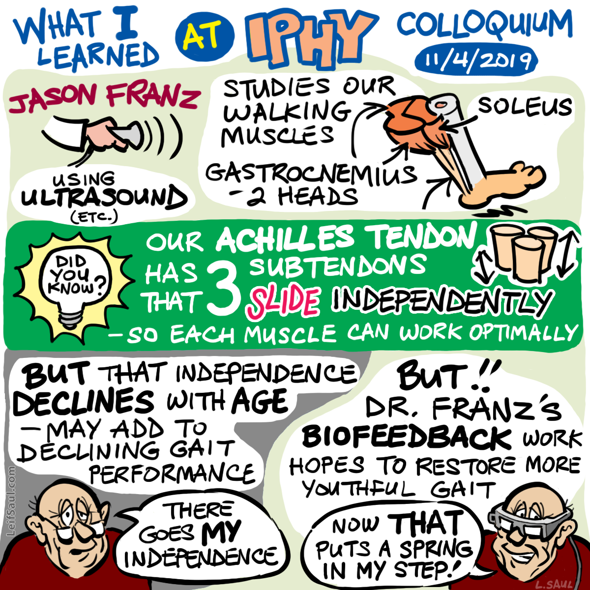 Cartoon representation of colloquium talk by Jason Franz at Integrative Physiology Department, CU Boulder, November 4, 2019